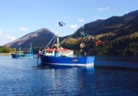 LSFC Boats with Saltire sunny day